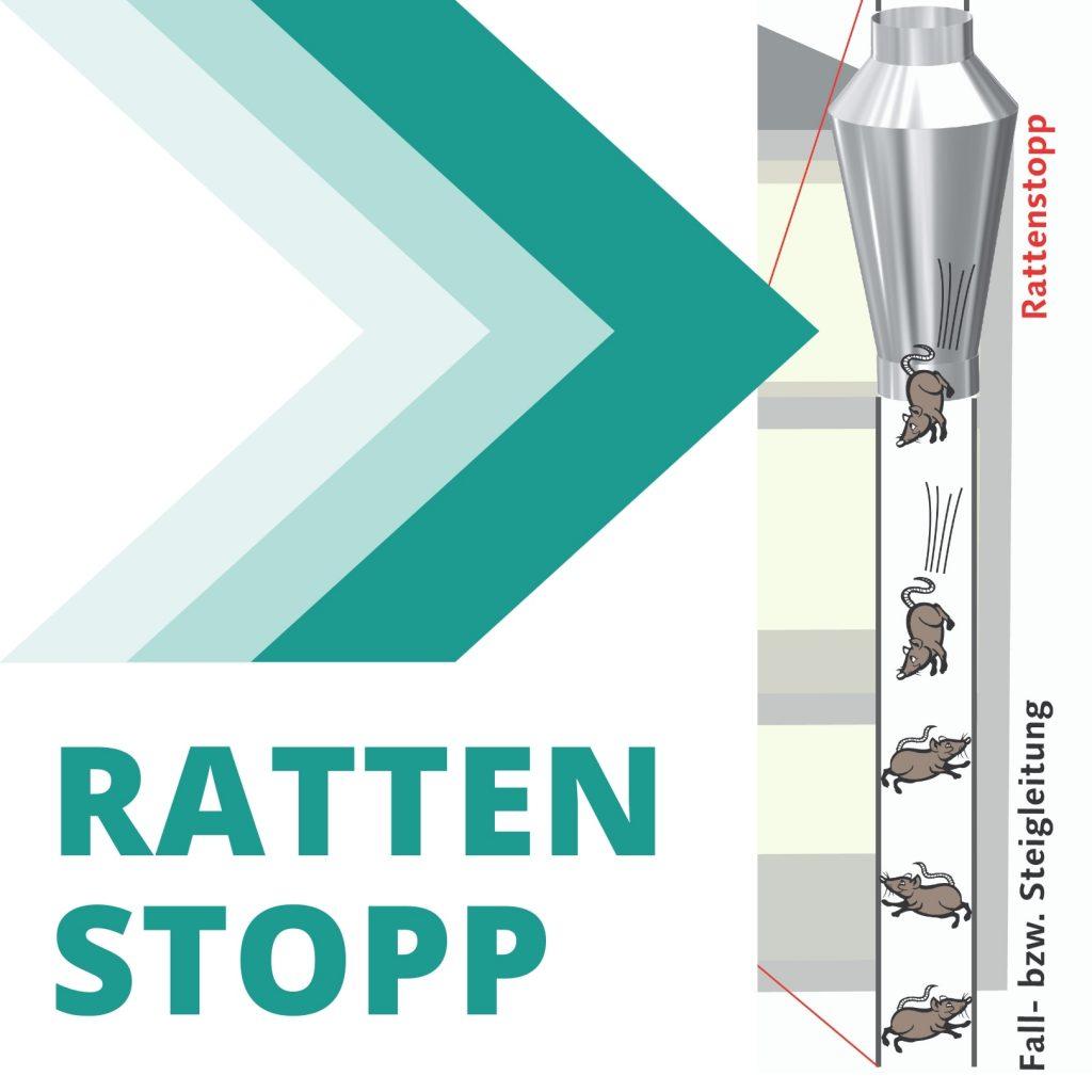 Rattenstopp